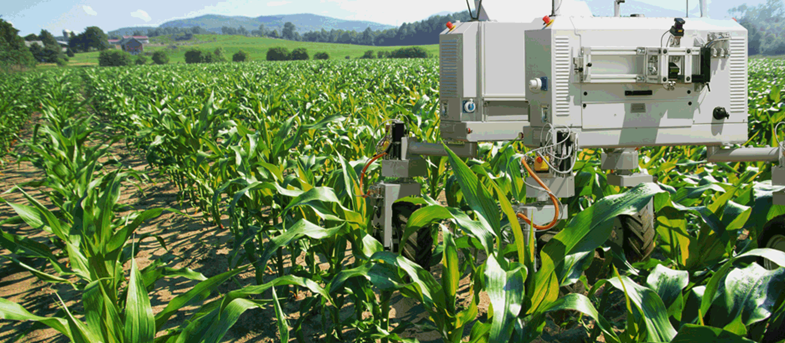 internet of things(iot) in farming and agriculture The internet of things (iot) is poised to become an important element in the world of precision agriculture referred to as agricultural iot, it allows farmers to remotely monitor sensors that keep tabs on everything from soil moisture and crop growth through livestock feed levels, storage conditions, animal behavior and energy consumption.